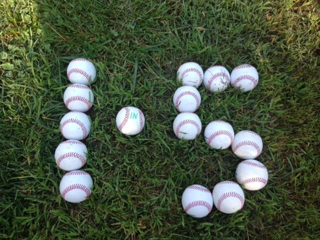 Dyslexia-advocate moms often hit it out of the park, stepping up to the plate for the 1 in 5 with dyslexia.